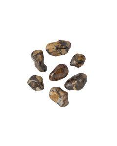 Jasper Autumn Leaf Tumblestone 19-26mm (KGS) NETT