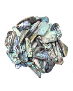 Shell Abalone (South African Shape) 30-40mm Large Tumblestone (100g)