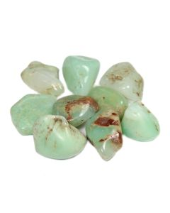 Chrysoprase 20-30mm Medium Tumblestone Brazil (100g) NETT