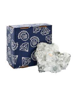 1 PC Apophylite Cluster in 19x19cm Box, India (1 box) NETT