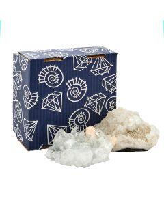 2 PCS Apophylite Cluster in 19x19cm Box, India (1 box) NETT
