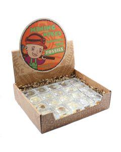 Mining Mike's Prehistoric Creatures Retail Box (Magnifier) (20 Piece) NETT