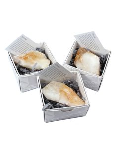 Citrine Heat Treated Point Gift Boxed with ID Card (9 Piece) NETT
