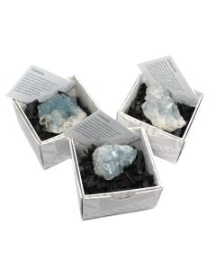 Celestite Cluster Gift Boxed with ID Card (9 Piece) NETT