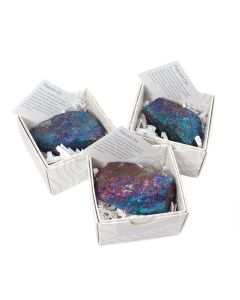 Peacock Ore Boxed with ID Card (9 Piece) NETT