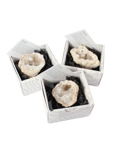 Polished Quartz Geodes Boxed with ID Card (9 Piece) NETT