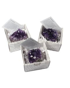 Uruguayan Amethyst Cluster Gift Boxed with ID Card (9 Piece) NETT