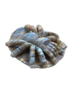 """Labradorite Spider Carving 3"""" (1 Piece) SPECIAL"""