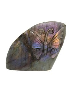 """Labradorite Butterfly Relief Carving (3.75x1.25x4"""") (1 Piece) SPECIAL"""