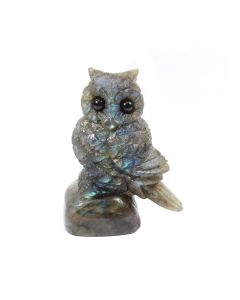 """Labradorite Owl Carving With Base 3"""" (1 Piece) SPECIAL"""