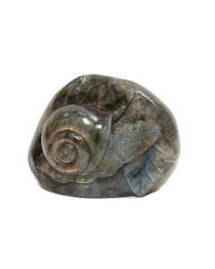 "Labradorite Snail Carving With Base (3.5x1x2.75"") (1 Piece) SPECIAL"