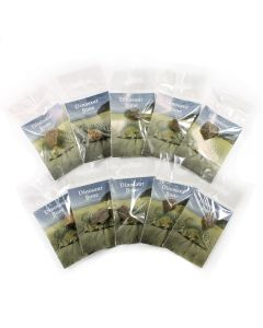 Dinosaur Bone (10pcs) (Was £1.50 Now £0.75) NETT