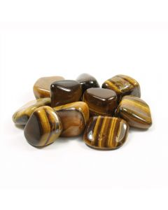 Tiger Eye Gold South African Shape  20-30mm Medium tumblestone (100g) NETT