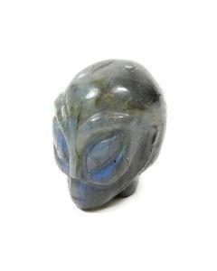 """2"""" Alien Skull Carving Labradorite (1 Piece) NETT"""