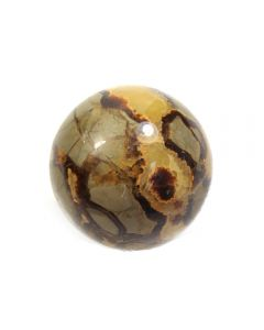 Septarian Sphere 60-70mm (1 Piece) NETT