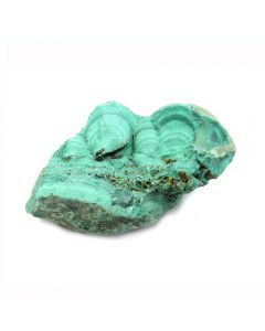 "Malachite Zaire 1"" (1pc)"