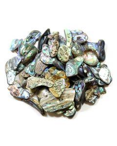 Abalone Shell (100g) 20-30mm Med tumble