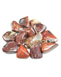 Jasper Brecciated South African Shape 20-30mm Medium Tumblestone (100g)