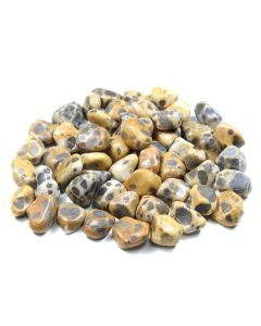 Cheetah Jasper 10-20mm Small Tumblestone (250g) NETT