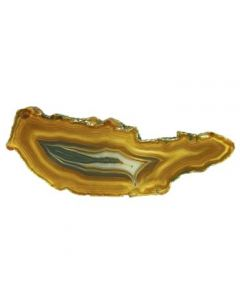 """A1 Agate Slice Natural (1.5"""" to 2"""") (1 Piece) NETT"""