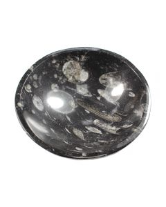 "4.5"" Fossil Stone Orthoceras Bowl (1pc) NETT"