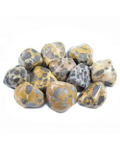 Cheetah Jasper 30-40mm Large Tumblestones (250g) NETT
