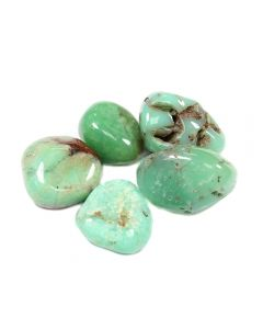 Chrysoprase 1st Grade 20-30mm Medium Tumblestone (50g) NETT