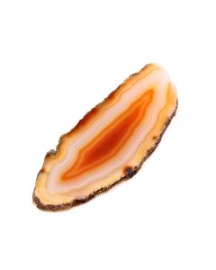 "A0 Agate Slice Natural (up to 2"") (1 Piece) NETT"